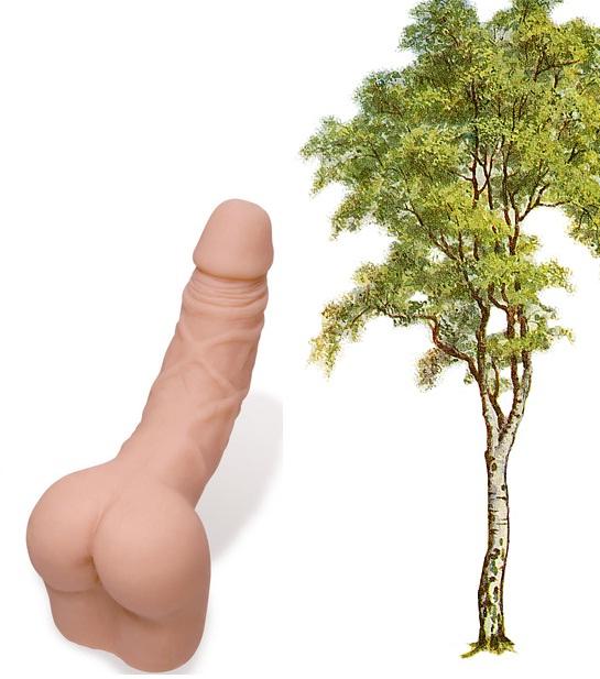 Sex Toy Joke Picture